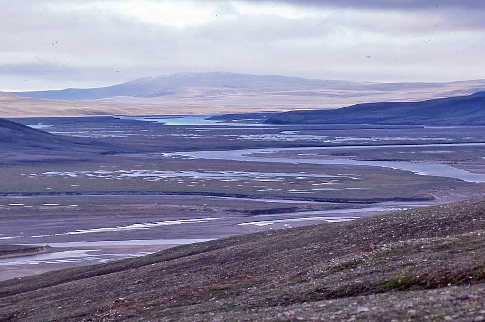Thomsen River